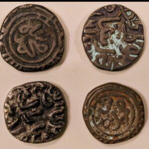 Delhi state coin